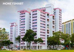 enhanced housing grant ehg