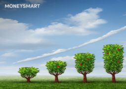 growth-trees-investment-header