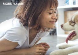 cheap pet shop & online pet shops singapore 2018