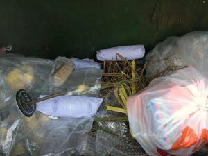 food waste singapore dumpster diving