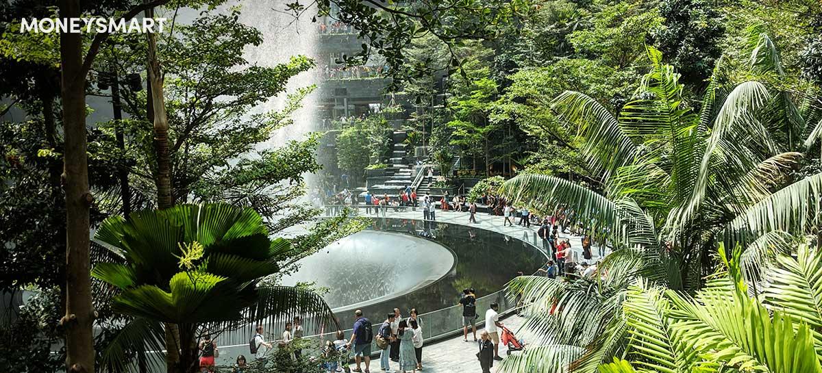 Jewel Changi Airport Rain Vortex Kid-Friendly Canopy Park